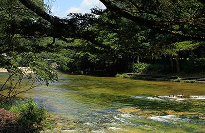 鳳来峡・板敷川